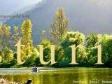 CityWinks Travels! Asturias,ElSella