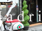 Saint Brissant:Made in Madrid Style & VIP PartyExperience